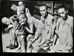 PHOTO Presse ORIGINALE + Document PELURE _ WW2 WWII : HOLOCAUST _ DEPORTES - Krieg, Militär