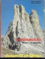 CATINACCIO - RIFUGI-SENTIERI - VIE ATTREZZATE - DOLOMITI DI FASSA - ED. OLTRALPE 1983 - PAGG. 95 - USATO - FORMATO 15X20 - Turismo, Viajes