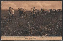 """Kolonie Ben Shemen - Publisher """"Lebanon"""" No. 206 Israel Palestine Jewish Judaica Postcard - Giudaismo"""