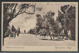 EKRON (Today Mazkeret Batya) - Publisher Eliahu Bros. - Israel Palestine Jewish Judaica Postcard - Giudaismo