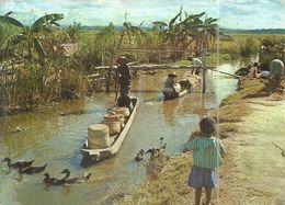 (TANANARIVE )( MADAGASCAR ) PIROGUIERS SUR LES CANAUX D IRRIGATION - Madagascar