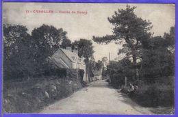 Carte Postale 50. Carolles  Entrée Du Bourg Très Beau Plan - Andere Gemeenten