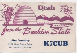 Cpa.Cartes QSL.Utah.beehive State.K7CUB.1961.to PAOKA - Radio Amatoriale