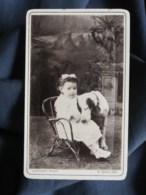 Photo CDV  Laffont à Limoux  Jeune Enfant Assis Dans Un Fauteuil En Rotin Avec Un Gros Chien  CA 1890 - L512A - Oud (voor 1900)