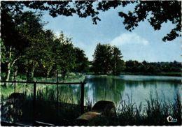 CPM Chaource- Etang De La Cordeliere Et Le Chalet FRANCE (1020980) - Chaource