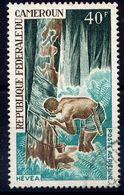 CAMEROUN  - N° A116° - HEVEA - Camerún (1960-...)