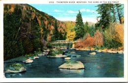 Montana Thompson River Home Of The Big Trout Curteich - Etats-Unis