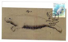 Malaysia Marine Life Definitive 2020 Maxicard Maximum Card Sea Turtle Postmark Dugong Original Illustration From Mueller - Malaysia (1964-...)