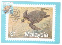 Malaysia Marine Life Definitive 2020 Maxicard Maximum Card Sea Turtle Postmark - Malaysia (1964-...)