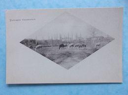 17 : HAIMPS FRESNEAU , PATURAGES CHARENTAIS , Carte Verte , Animée , C.P.A. , En Bon état - Autres Communes