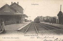 58  Calmpthout Aankomst In De Statie Van Den Trein. Hoelen 487 - Kalmthout