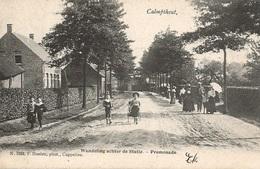 60  Calmpthout  Wandeling Achter De Statie Hoelen 1088 - Kalmthout