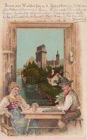 Litho, Prägekarte 1899 Gel. Gruss Aus Waidhofen An Der Ybbs, Niederösterreich, Österreich - Waidhofen An Der Ybbs
