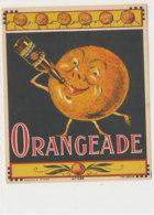 AN 1054 / ETIQUETTE  -ORANGEADE N° 684 - Frutta E Verdura