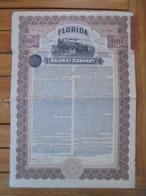 USA - FLORIDA RAILWAY CIE - TITRE DE 100 DOLLARS - ETAT VOIR SCAN - Aandelen
