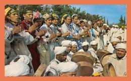 A673 / 057 Maroc Danse Tribu Glaoua - Morocco