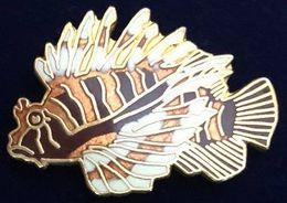 POISSON - FISCH - PEZ - PESCE - FISH - RASCASSE VOLANTE - PTERROIS - EGF   -            (26) - Animales