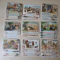 CHROMO Liebig - Lot Collection - 9 Sets Complets - 54 Cards - Vénézuela , Corporations , L'eau - Liebig