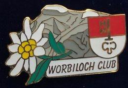 EDELWEISS - FLEUR - FLOWER - WORBILOCH CLUB - CANTON D'OBWALD  - SUISSE - SCHWEIZ - SVIZZERA - SUIZA - SWISS -     (26) - Pin's & Anstecknadeln