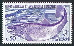 TAAF 1977 - Yv. 71 **   Cote= 2,00 EUR - Faune. Alevinage Des Saumons  ..Réf.TAF21077 - Neufs