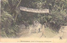 """Montmorency   Hôtel Restaurant  Drouin   """" Entrée De L'Ermitage Dans La Châtaigneraie  """" - Montmorency"""