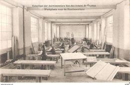 485) Sint-Truiden - Vakschool Der Aalmoezeniers Van Den Arbeid - Sint-Truiden