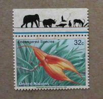 NY96-01 : Nations-Unies (New-York) / Protection De La Nature - Masdevallia Veitchiana (Orchidée) - Unused Stamps