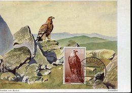 55904 Span. Sahara Maximum 1957 Eagle  Aigle  Adler - Adler & Greifvögel