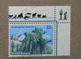 NY96-01 : Nations-Unies (New-York) / Protection De La Nature - Carnegiea Gigantea (Saguaro) - Unused Stamps