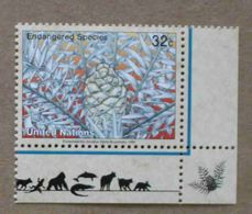 NY96-01 : Nations-Unies (New-York) / Protection De La Nature - Encephalartos Horridus - Unused Stamps