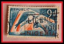 110. NIGERIA (9d) USED STAMP BIRDS , GREY PARROT . - Nigeria (1961-...)