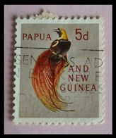 110. PAPUA NEW GUINEA (5d) USED STAMP BIRDS OF PARADISE. - Papua New Guinea