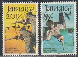 Jamaica, Scott #595-596, Used, Pelicans, Issued 1985 - Jamaique (1962-...)