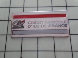 1320 Pin's Pins / Beau Et Rare / THEME : BANQUES / CREDIT AGRICOLE ILE-DE-FRANCE - Bancos