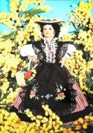 Carte Postale Poupée Doll   Costume Niçois Et Mimosa - Poupées