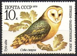 USSR RUSSIA - 1979 -  1v - MNH - Chouette Effraie - Barn Owl - Tyto Alba - Owls - Búhos - Eulen - Chouettes - Hiboux - - Hiboux & Chouettes