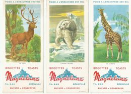 Buvards - Biscottes - Toasts - Magdeleine Granville - Série Animaux : Girafe ,Ours Blanc , Cerf - Biscottes