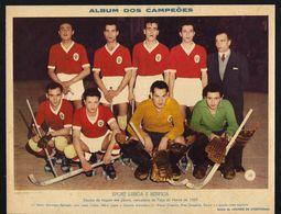 SPORT LISBOA E BENFICA Equipa Hoquei Em Patins Vencedora Taça Honra De 1954. Foto Gravura / Poster Hockey Skate PORTUGAL - Hockey - NHL