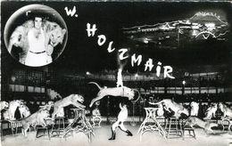 Cirque AMAR : W. Holzmaïr (Groupe De Lionnes Et Lions) - Zirkus