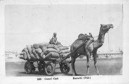 Carte Postale Photo KARACHI-CORACHIE (Pakistan) Camel Cart-Attelage Chameau-Stamp-Timbre - Pakistán