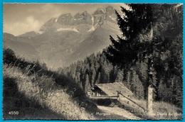 CPA CPSM AK Suisse MORGINS VS Valais - Les Dents Du Midi (timbre Décollé) - VS Valais
