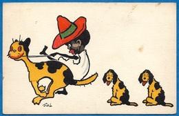 """CPA AK Illustrateur FAL Humour """"Petit Noir"""" Chat Chiens ° M.M. VIENNE N° 244 - Illustratori & Fotografie"""