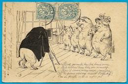 Rare CPA AK Illustrateur Humour Photographe & Famille De Cochons * Pig Cochon Chambre Photographique Pose - Cochons