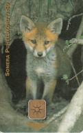 FINLAND - Fox, Sonera Telecard, Tirage 20000, 12/98, Used - Finlande