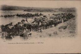 CARAVANE EN MARCHE DU CAID BEN GANAB ...CPA - Algeria