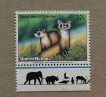 NY97-01 : Nations-Unies (New-York) / Protection De La Nature - Putois D'Amérique à Pieds Noirs (Mustela Nigripes) - Unused Stamps