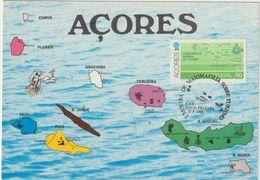 Carte-Maximum PORTUGAL- ACORES  N° Yvert  325 (CARTE De L'ARCHIPEL) Obl Sp Ill 1980 - Azores