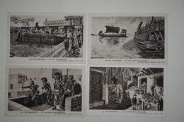 Lot De 8 Cartes Anciennes - La Vie Grecque - Histoire