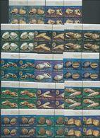Cook Islands 1974 Shell Definitives Short Set Of 14 To 30c MNH Blocks Of 4 With Marginal Inscription - Cook Islands