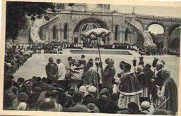 Carte Postae.  Lourdes. Procession Des Malades - Algeria